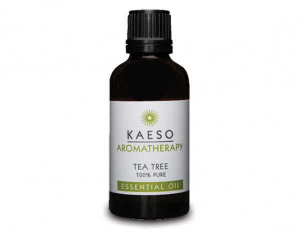 Kaeso tea tree oil 50ml