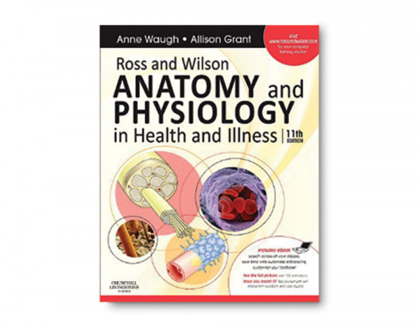 Anatomy and physiology in illness and health