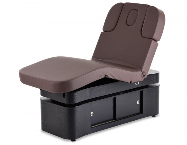Esthetix deluxe spa electric couch