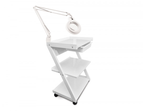 Esthetix Z trolley and magnifier lamp deal