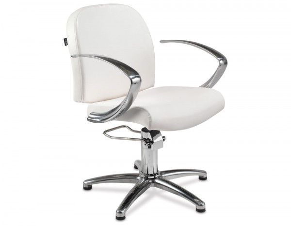 REM Evolution styling chair, colour